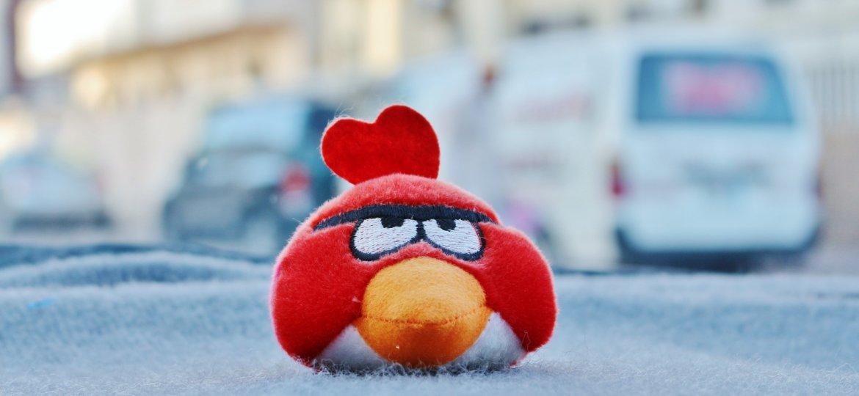 angry-bird-2234295_1920
